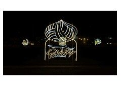 Building illumination and Lighting service for your Event  Middle East