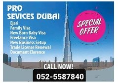 Best price of freelance visa in Dubai-UAE