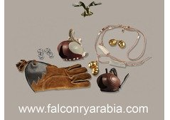 BUY BEST FALCONRY KIT