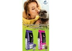 Cat Litter Products