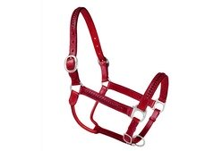 buy braided leather horse halter