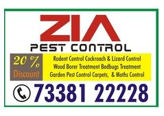 Bangalore Pest Control 25% Discount for Apartments and Hospitals