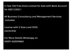 Business Consultancy and Management License for Sale