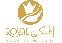 Pure Honey in Dubai | Natural Delicious Honey Al Malaky - Dubai