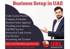 UBL Business Setup all in one business solution in UAE