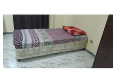 Neat and Clean Executive Ladies accommodation for AED 1100