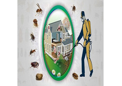 Hire Best Services of Pest Control in Dubai   Todays Co