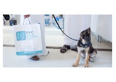 Pet care in Abu Dhabi -Pet health care plans