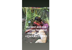 The real best herbalist in Nigeria