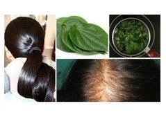 Are Homeopathic Hair Loss Treatments Really Effective?