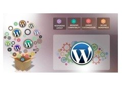 Effective WordPress Web Designing