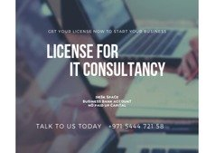 IT Consultancy Service License Available With Visa