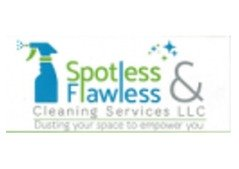 Male Cleaner