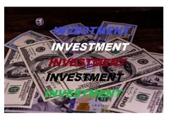 I NEED YOUR ASSISTANT TO INVEST IN U.A.E