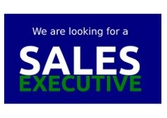 Wanted Outdoor Sales Executive