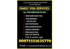 Family renewal visa, New entry permit in 2 DAYS