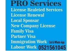 PRO/Licence Related Service in Dubai