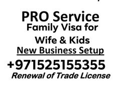FAMILY VISA SERVICES For WIFE and Kids PRO SERVICES IN ALL UAE
