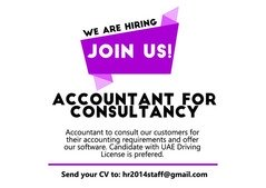 Accountant for Consultancy